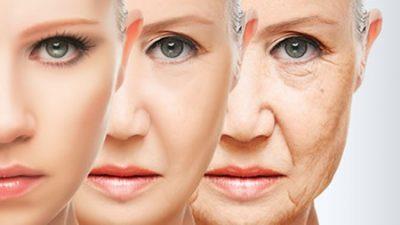 Understanding the Menopausal Skin